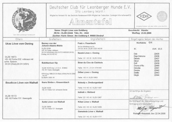 Körprotokoll Laila Leonberger 2